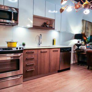 Modern Kitchen Cabinet Designs